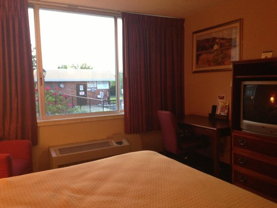 Red Roof Inn Lexington - Winchester: View from our room