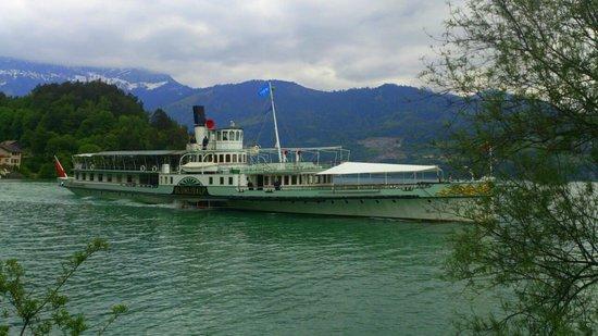 "historical vessel ""Blümlisalp""  cruising Thunersee"
