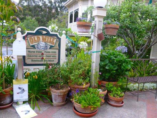 Apple Farm Inn: Near the diner