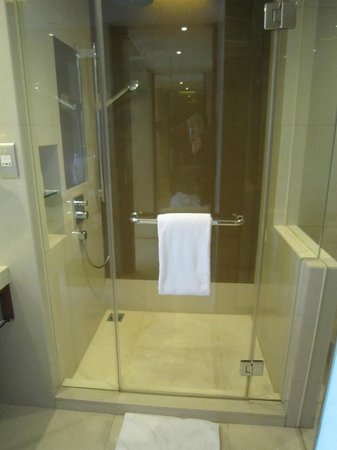 Big standing shower with double shower head - Picture of Hyatt ...