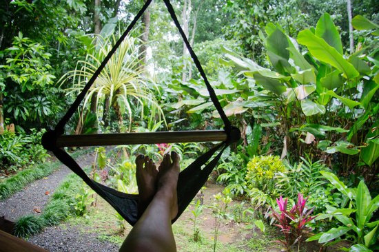 Playa Nicuesa Rainforest Lodge: relaxing on the front porch of my cabina