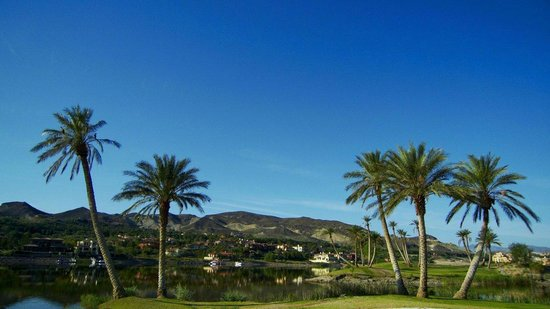 The Westin Lake Las Vegas Resort & Spa : lac