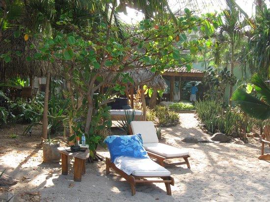 Sueno del Mar Beachfront Bed & Breakfast: Sueno del Mar beach