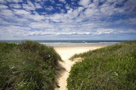 BIG4 Nambucca Beach Holiday Park: Beach Entrance
