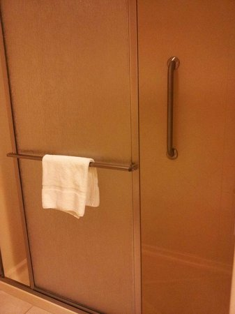 Homewood Suites Hagerstown: Bathroom