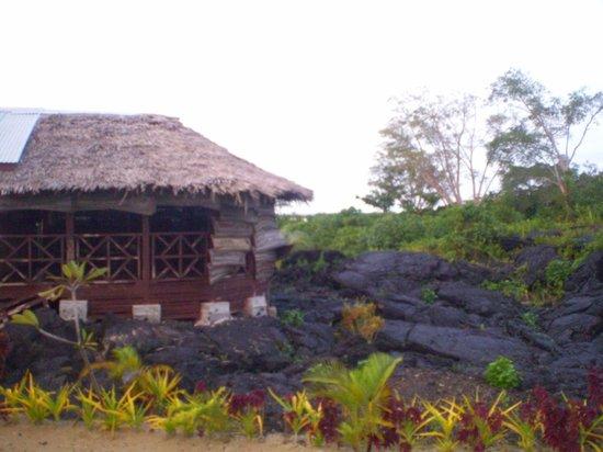 Bayview Resort: Fale