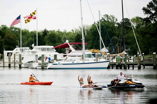 Shore Pedal and Paddle: St. Michaels