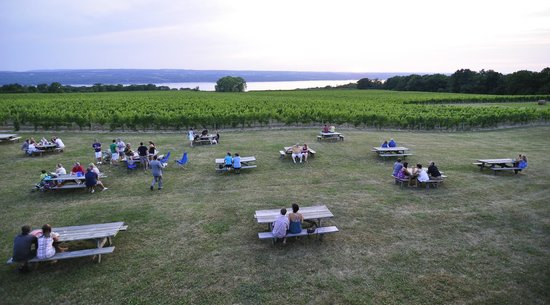 The lawn at Wagner Vineyards. Photo by Stu Gallagher