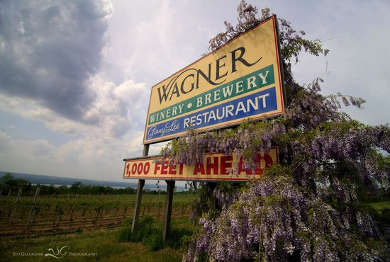 ‪Wagner Vineyards‬