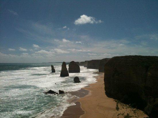 Wildlife Tours Australia: Great Ocean Road (12 Apostles)