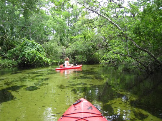 Juniper Springs Recreation Area: Canoe Run.