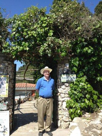 Bar Jovis Entrance Capri 5 2013
