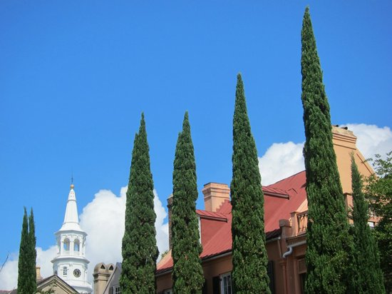 Ed Grimball's Walking Tour of Historic Charleston: A fantastic view of the cathedral