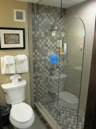 The Cheshire: Epic Poolside King shower