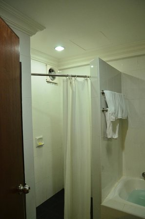 Grand Kampar Hotel: Bath tub for young kids and shower next