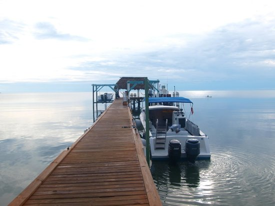 Hamanasi Adventure and Dive Resort: Dock