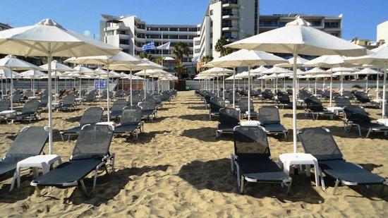 Aquila Porto Rethymno: Вид с пляжа на отель