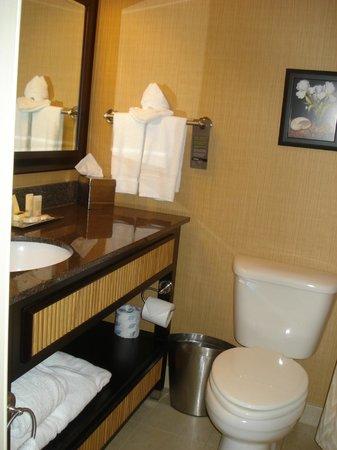 Wyndham Grand Pittsburgh Downtown: bathroom2