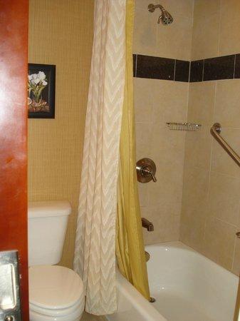 Wyndham Grand Pittsburgh Downtown: bathroom1