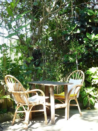 Yellow Flower Cafe: Surrounded by nature at Yellow Flower