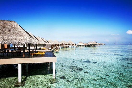Velassaru Maldives (Velassaru Island) - Resort Reviews ...