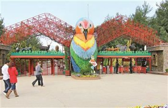 الطاووس ... - Picture of Gaziantep Zoo, Gaziantep ...