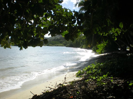 Le Bonheur Villa: The beach by the Villa