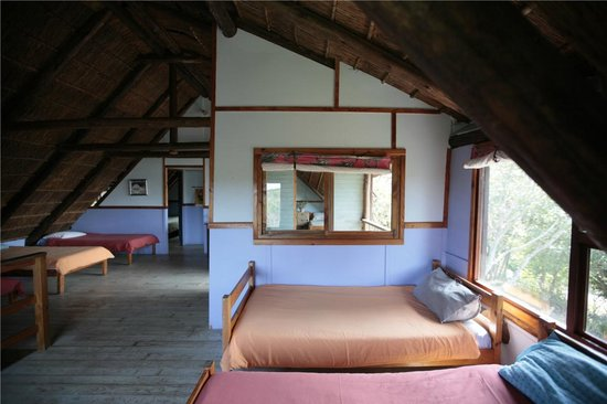 بوكانيرز باكباكرز: Dorm room
