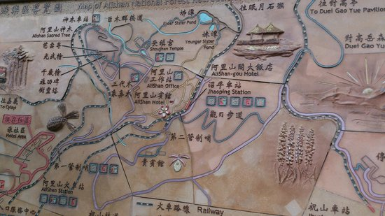 Details likewise 203 Ch News detail moreover Transportation in addition LocationPhotoDirectLink G1433864 D578643 I69753269 Ali Mountain Alishan Chiayi County moreover Debao Business Hotel. on taiwan map location