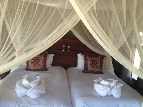 Hoodia Desert Lodge: Bedroom