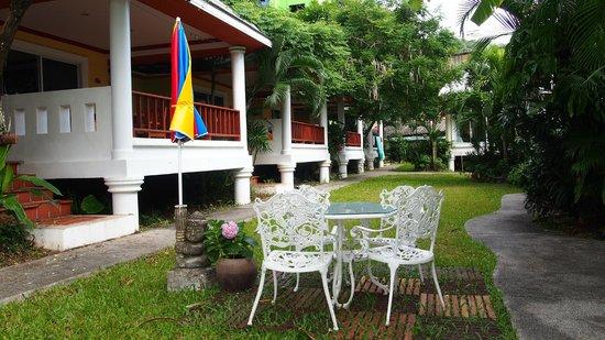 Lemon House: Garden view