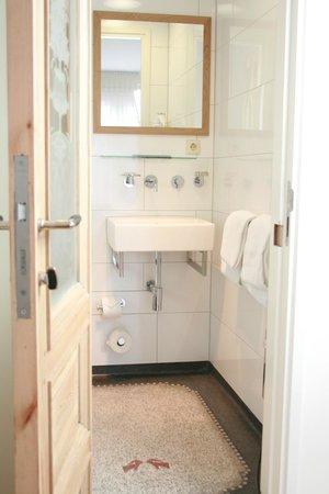 Haas op het Vrijthof : Bathroom comfort