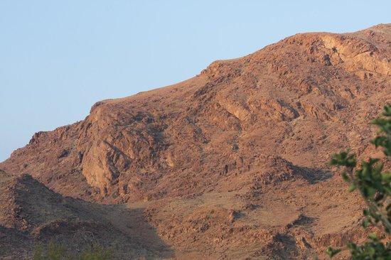 Hoodia Desert Lodge: Lions Head hill from deck