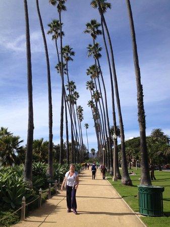 Palisades Park : Olha o visual da caminhada!