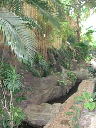 Juliana Hotel Phnom Penh: garden view