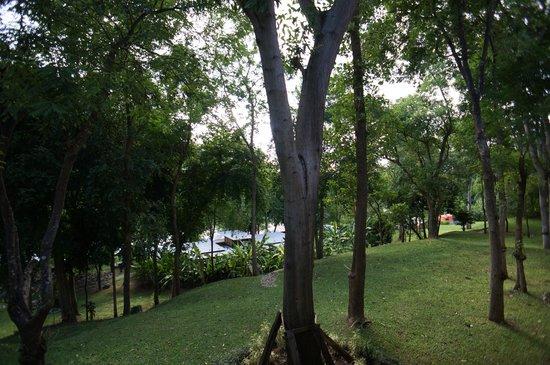 Mida Resort Kanchanaburi: View from balcony