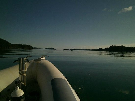 Northland Dive: Heading out for a perfect day
