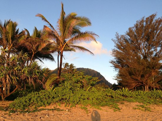 Hale Makai Cottages: view from our cottage