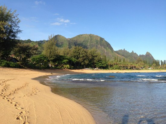 Hale Makai Cottages: our beautiful beach