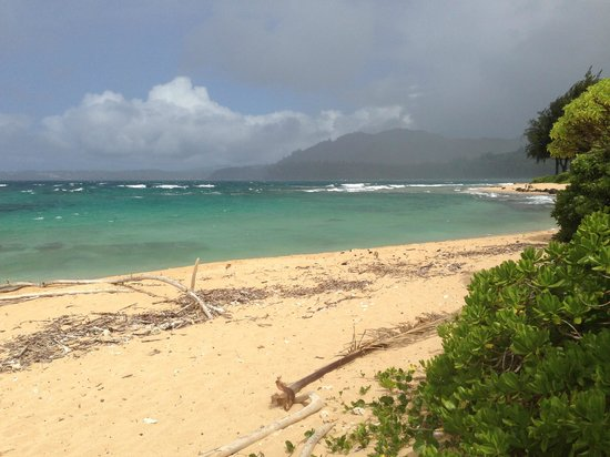 Hale Makai Cottages: another view from our cottage/beach area