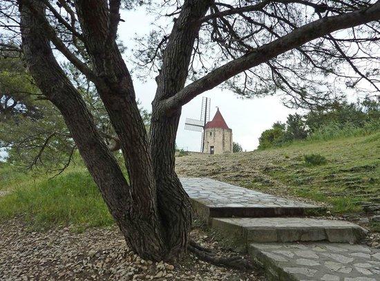 Moulin de Daudet : 3
