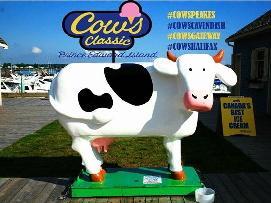 Cows Creamery : COWS at Peakes