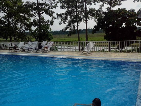 Hotel Hermitage: Swimming Pool, River & the Jungle