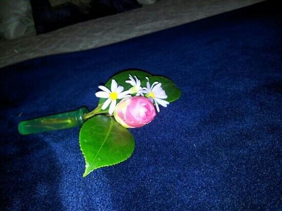 Gembrook Cottages: flower on bed