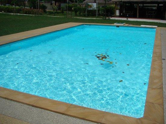 Samui Tonggad Resort: бассейн