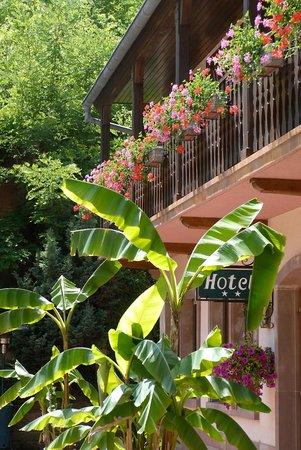 Silence Hotel Auberge Imsthal : balcon