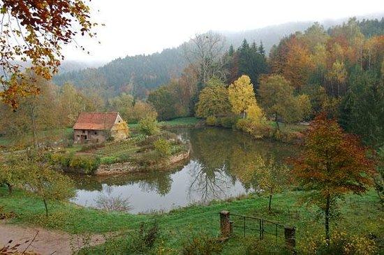 Silence Hotel Auberge Imsthal : etang 2