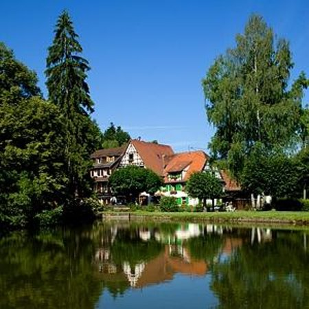 Silence Hotel Auberge Imsthal : vue etang