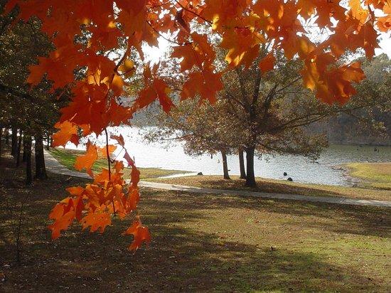Davidsonville Historic State Park: getlstd_property_photo