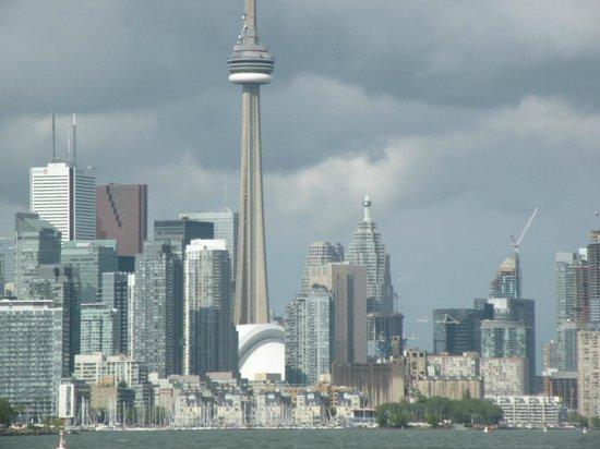 Tallship Cruises : Toronto Skyline from the ship